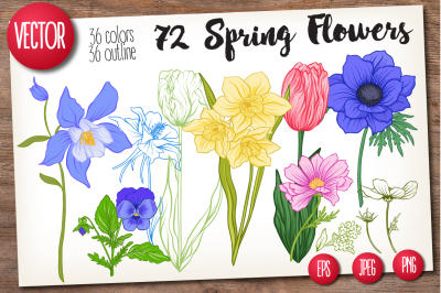 72 Spring Flowers