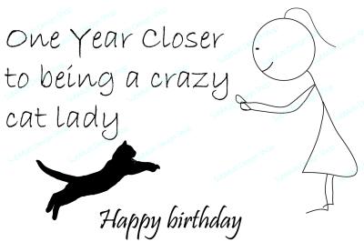 crazy cat lady / funny birthday card