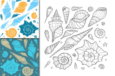 Vector sea shells + patterns