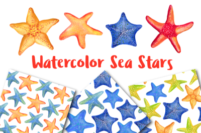 Watercolor Sea Stars + Patterns