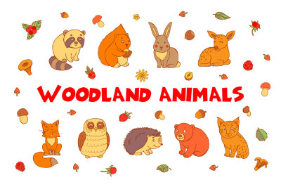Woodland Vector Animals + Patterns