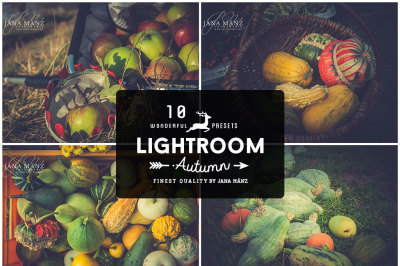 10 Autumn Vintage Lightroom Presets