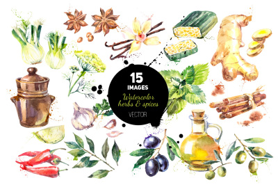 Watercolor Han Drawn Herb & Spices Vector Set