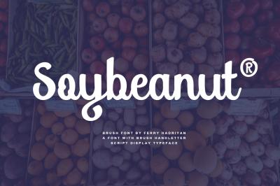 Soybeanut - Brush Script Font