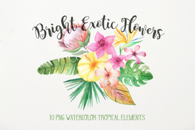 Watercolor Exotic Flowers Mini Set