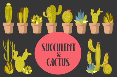 Succulent & Cactus+ 2 cards