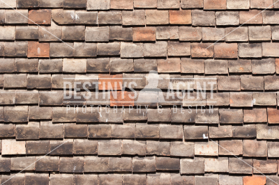 Roof Tiles - Stock Image