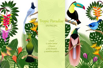 Tropic Paradise. Tropical Birds Collection.