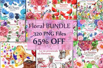 BUNDLE Watercolor floral elements