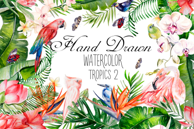 Hand Drawn watercolor TROPICS 2