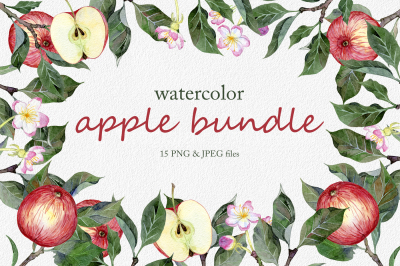 Hand drawn watercolor apple set
