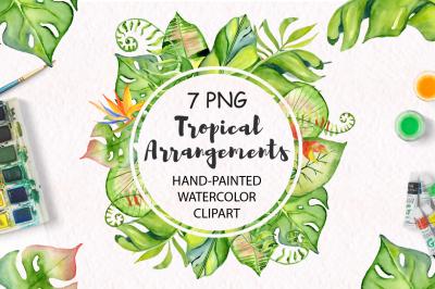 Tropical arrangements watercolor jungle clipart