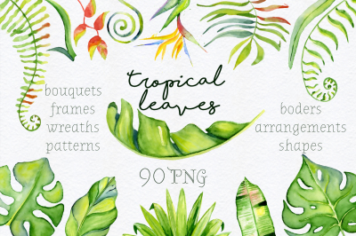 Tropical leaves Watercolor Jungle clipart. 90 PNG