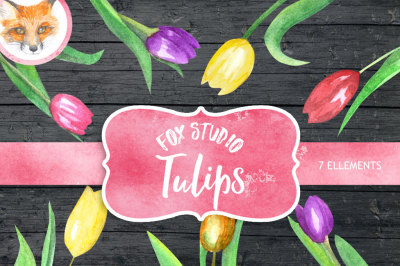 Tulip Watercolor clipart, flower clipart, wedding clipart, pink flower clipart, digital clipart, hand painted, floral clipart, spring flower