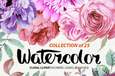 Watercolor Burgundy Floral Elements Peonies and Roses&2C; Boho style&2C; Wedding Invitations Clipart&2C; Purple Flowers&2C; Individual PNG files.