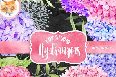 Floral Watercolor Photoshop Clipart, Spring Blog Design Resource