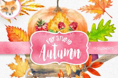 Fall clipart, Pumpkin clipart, Autumn clipart, fall leaves clipart, mushroom clipart, card templates, watercolor, digital paper, baby art