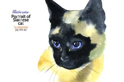 Watercolor Siamese cat