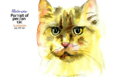 Watercolor persian cat