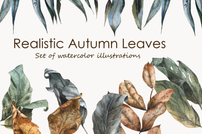 Realistic Hand Drawn Watercolor Autumn Leaves Set