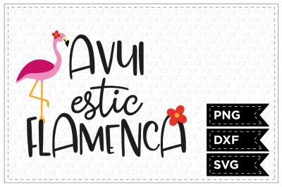 Avui estic flamenca