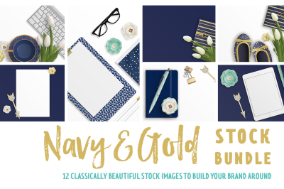 Navy & Gold Stock Bundle