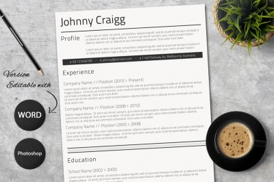 Professional Resume in Ms Word Format