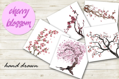 Sakura japan cherry branch with blooming flowers