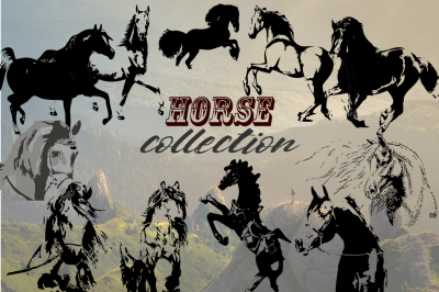 Hand drawn horse collection, vector