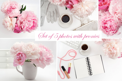 Set of beautiful photos with peony flowers
