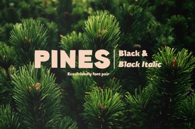 Pines Black & Pines Black Italic