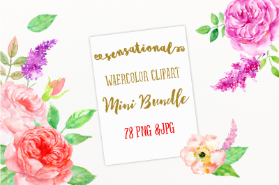 Watercolor Mini Bundle Sensational