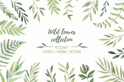 Wild leaves collection. Watercolor