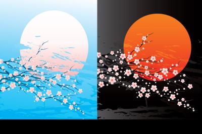 bloom cherry-tree twig and sun