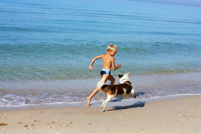 boy playing with dog on sea
