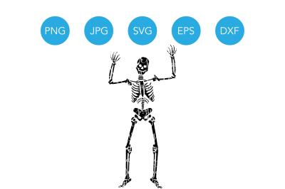 Skeleton SVG, Skeleton Silhouette SVG, Halloween Skeleton SVG, Halloween SVG, SVG, SVG File, Cricut SVG File, Halloween Cut Files