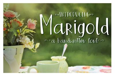 Marigold Font - On Sale!