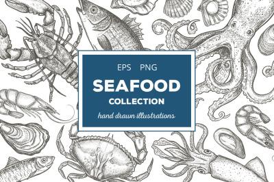 Seafood Illustrations