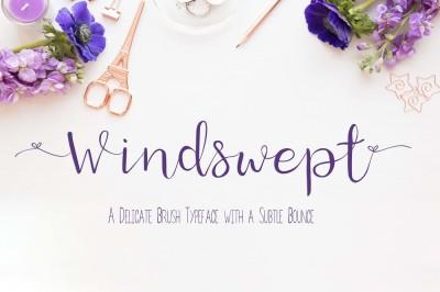 Windswept, A delicate Brush Script Font