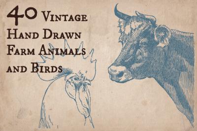 40 Vintage Farm Animals and Birds