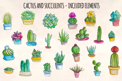 24 Cactus and Succulent Watercolor Illustrations