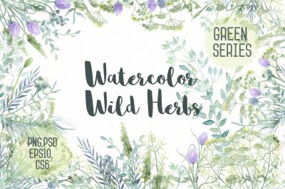 Watercolor Wild Herbs