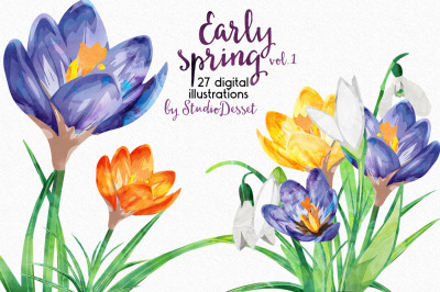 Spring Flowers - Watercolor Clipart