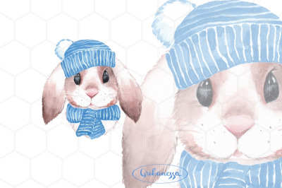 Bunny. Rabbit in blue hat. Watercolor