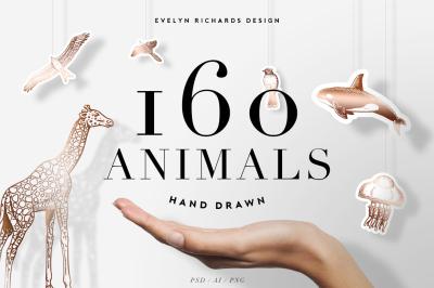 160 Animals • Hand Drawn