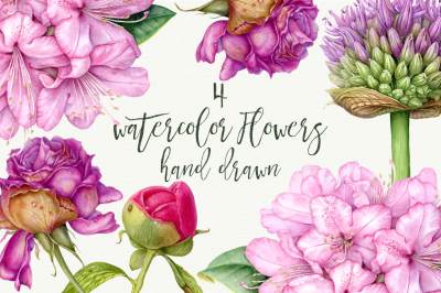 Set of 4 high quality watercolor botanical prints