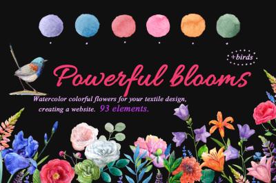 Watercolor flowers,birds.