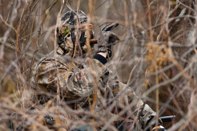 hidden hunter