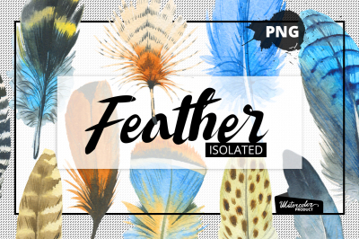 Watercolor feather PNG and patterns