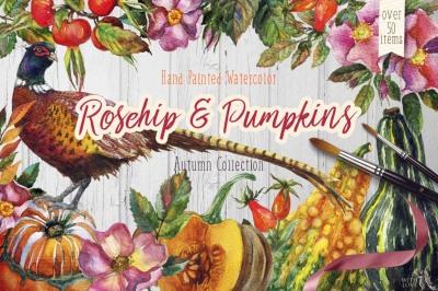 Watercolor Rosehip & Pumpkins Set
